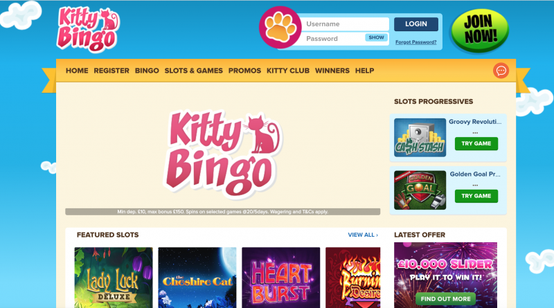kitty bingo screen shot